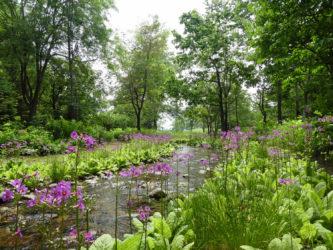 六花の森3