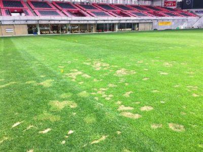 芝生がはげて凸凹のノエビアスタジアム